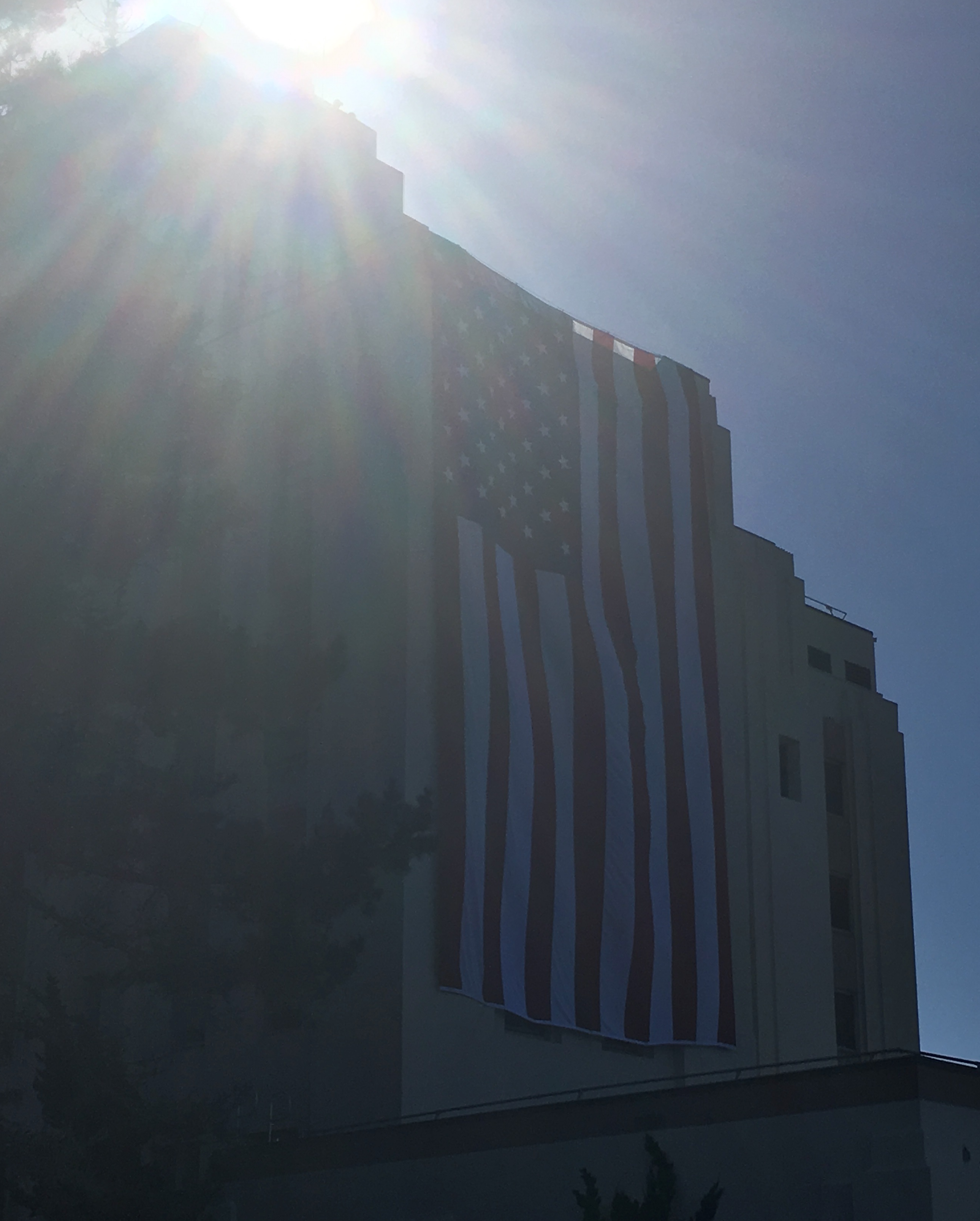 Large VA flag on building